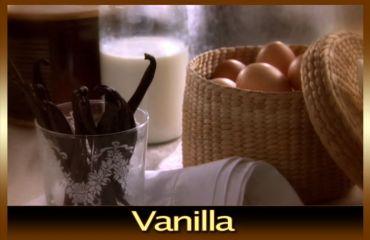 Gelato with vanilla flavor